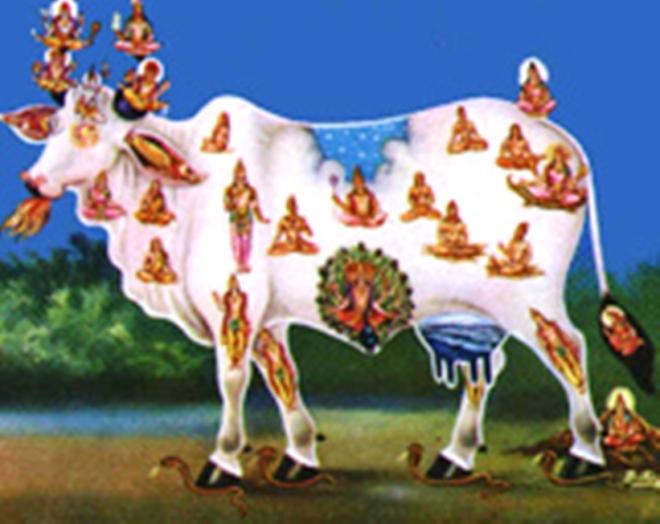 lakshya a 2